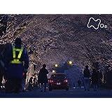 「夜の森 桜のトンネルで」