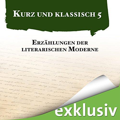 Erzählungen der literarischen Moderne audiobook cover art