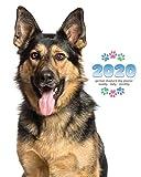 2020 German Shepherd Dog Planner - Weekly - Daily - Monthly
