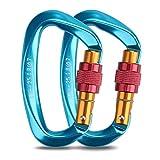 Welltop mosquetones de Escalada, mosquetón de Bloqueo de Aluminio, Gancho de mosquetón en Forma de D de 25 KN Resistente con Puerta de Tornillo (Azul)