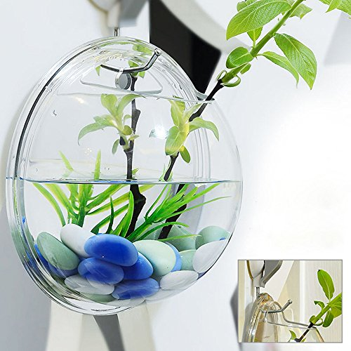 Pinjeer Dekoration Transparent Pflanzen Blumentopf Wandbehang Vasen Berg Blase Aquarium Schüssel Aquarium Aquarium