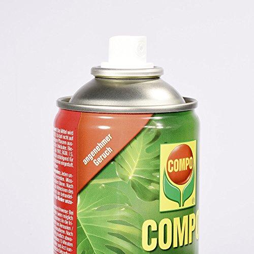 COMPO Zierpflanzen-Spray, Bekämpfung von Schädlingen an Zierpflanzen - 4