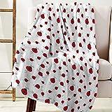 DaringOne Comfy Plush Fleece Throw Blanket 40x50 inch Cartoon Soft Coach Blanket Lightweight Stadium Blanket Red Lady Ladybugs Cute Ladybird White Background