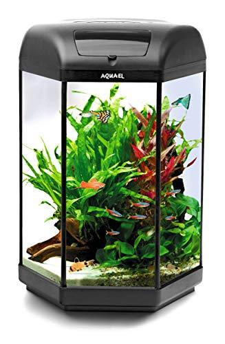 Aquael Hexa Set 60 schwarz