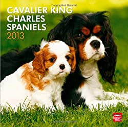 Cavalier King Charles Spaniels 2013 Calendar[Browntrout Publishers Inc.][Amazon]