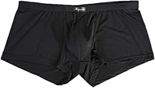 DEESEE(TM) Men's Underwears Sexy Ice Silk Letter Printed Boxer Briefs Shorts Bulge Pouch Underpants