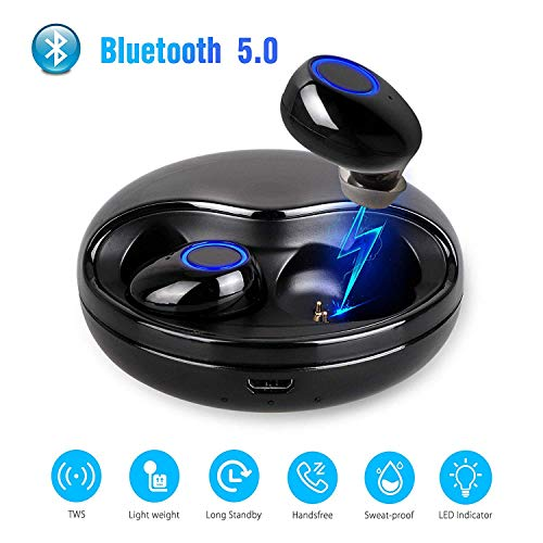 Echte draadloze oordopjes Bluetooth 5.0 Hoofdtelefoon, Links Rechts in-Ear Oortelefoon Gescheiden ontwerp, Waterdichte Auto Koppelen Mini Hoofdtelefoon met Opladen Case, Stereo Oproepen en Ingebouwde Mic (Zwart)