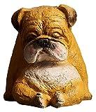 YANRUI Animal Perro Koala Arte Escultura Dinero Caja Hucha Gran cumpleaños Regalo Moneda Almacenamiento Caja Resina Estatua artesanía Domicilio decoración Accesorios Figurines