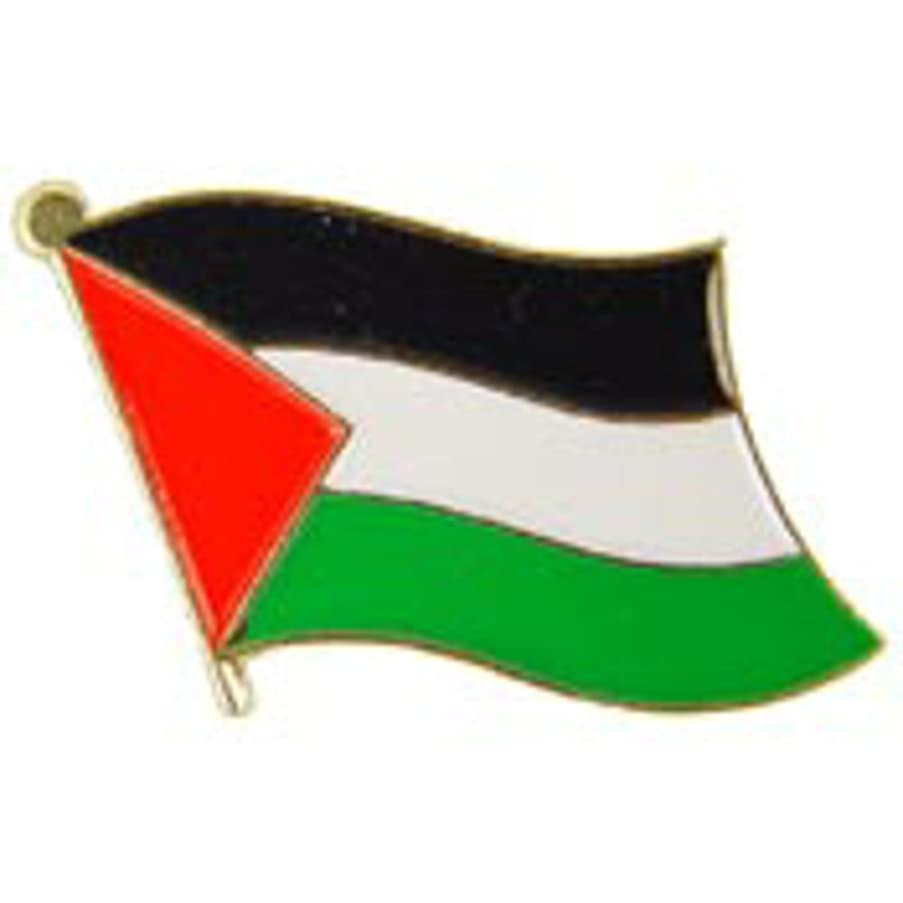 EagleEmblems P09583 PIN-Palestine (Flag) (1'')