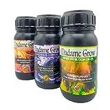 MADAME GROW Kit Red Anvil MG - Fertilizantes Orgánicos para Plantas Terapéuticas - Floración, Engorde y Energía - Plantas 420 Fuertes y Sanas - Cosechas Abundantes (3 x 250 ml)