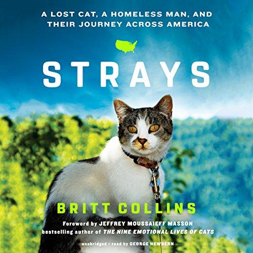 Strays audiobook cover art