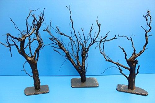 ZAC Wagner Moorkienwurzel XL 25-30cm Moorkien Garnelenbaum auf Schiefer Moorkienwurzeln Wurzel Moorkienholz Aquariumwurzel