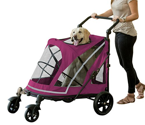 Pet Gear NO-ZIP Stroller, Push Button Zipperless Dual Entry, for Single or Multiple Dogs/Cats, Pet Can Easily Walk In/Out, No Need to Lift Pet, Boysenberry, Expedition