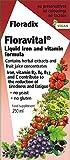Floradix Fer & Vitamin Formula Liquid 250ml