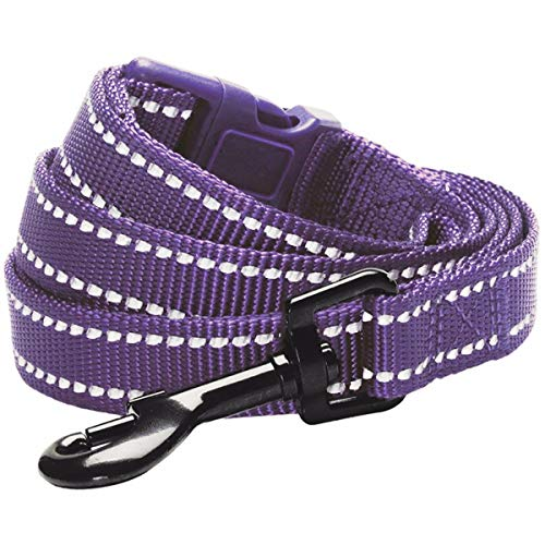 Blueberry Pet Essentials 6 Colors Durable 3M Reflective Classic Dog Leash 4 ft x 1, Violet, Large, Leashes for Dogs