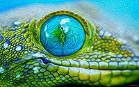 DMFNGJSD 数字油絵 フレームレス 、数字キット塗り絵 手塗り DIY絵-緑のヤモリのトカゲ-デジタル油絵 40x50 cm