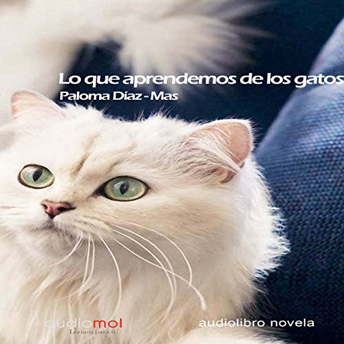 Lo que aprendemos de los gatos [What We Learn from Cats] audiobook cover art