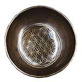 Ouqian Cuenco Tibetano Set de Cuenco Tibetano de meditación Meditación Yoga Sound Bowl con mazo, cojín de Seda for Yoga Meditación de Sonido Tazón (Color : Brass, Size : 21x9cm)