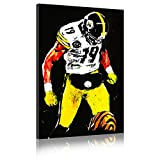 Five-Seller NFL Poster Pittsburgh Steelers # 19 Von Juju