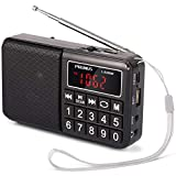 JXFS PRUNUS Portable SW/FM/AM/MP3/USB/SD/TF radio with neodymium speaker. Large button and large display. Stores stations automatically.-gold