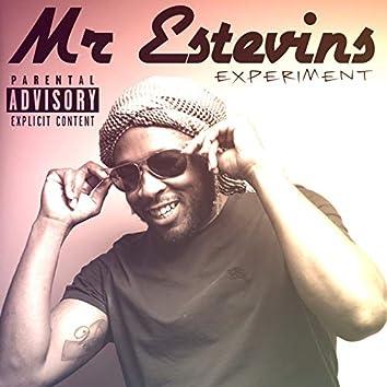 Mr Estevins Experiment