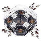 Trampas para cucarachas, Caja de trampas para cucarachas útiles Cucarachas Reutilizables para el hogar Bug Roach Catcher Cucarachas Asesino para la Cocina