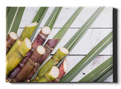 Bien viajado Hermosa planta de aloe fragante Arte de la pared del comedor 50 × 60.23 pulgadas Cálido y suave Combo 2 en 1 Lienzo Arte de la pared para el dormitorio Camping, viajes en automóvil Lienz