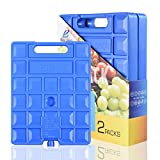 REV. LANG Large Freezer Cold Ice Pack Block Ice Chest, Reusable Long Lasting Quick Freezes with A Handle, for Coolers Lunch Box/Bag, Camping Beach Picnics Fishing,18-Degree F(1000g Set of 2)