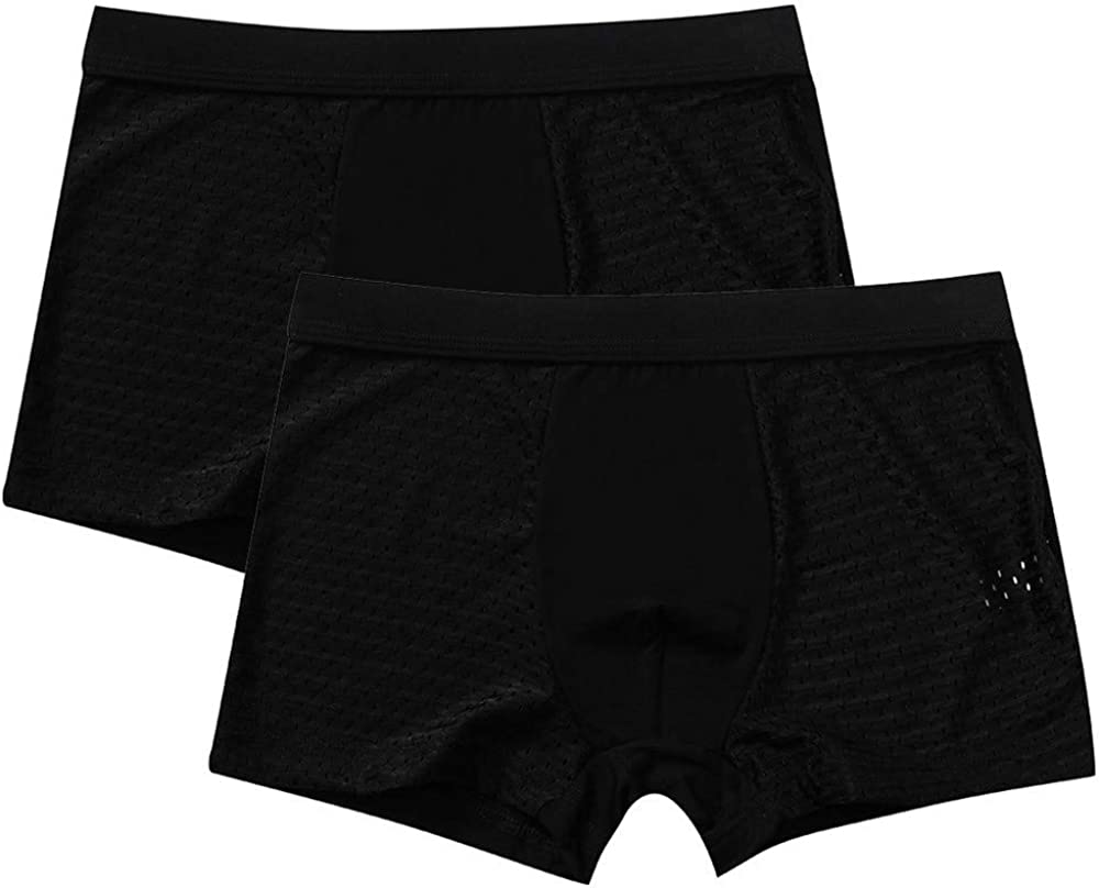 Men Underwear Ice Silk Low Waist Boxer Briefs Bulge Pouch Panties Thong Knickers