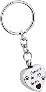 Pet Urn Keychain for Dogs Ashes Stainless Steel Heart Pet Palm Feet Memorial Ash Keepsake Cremation Jewelry