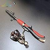 Mdsfe Mini Pen Aussehen Angelrute Tragbare Drehrad Angelrute 1 Stück Winter Outdoor Angelrute Angelzubehör - Lila, 1M