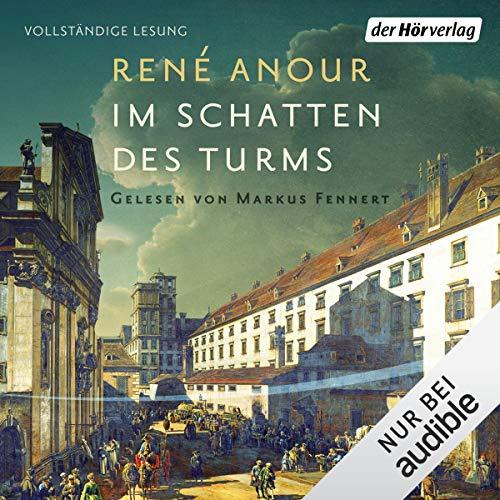 Im Schatten des Turms audiobook cover art