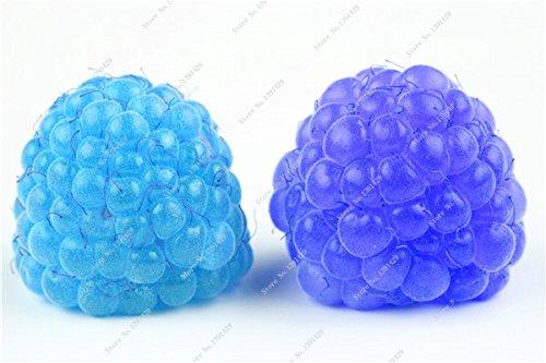 Coloré Blackberry Arbre Raspberry Graine Fruit Graine Mulberry Stratified Black Berry Bonsai non-OGM plantes bio 500 pcs/sac 9