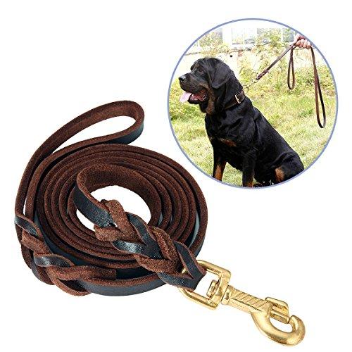Top 10 Best Leather Dog Leash Comparison