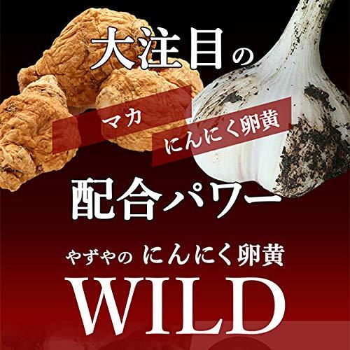 【やずや公式】にんにく卵黄WILD(マカ・すっぽん・牡蠣)310mg球×62球入り