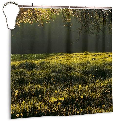 PQASDC Cortina de ducha eficiente de secado rápido para baño, cortina de ducha decorativa de 182 x 182 cm, juego de cortinas con 12 ganchos, decoración para el baño, prado y árbol de hierba