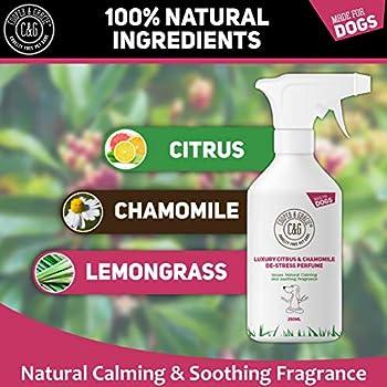 C&G - Spray de parfum pour chien de Cologne de stress - 250 ml - Toilettage apaisant - Calme le chiot nerveux et anxieux - Huiles essentielles citronnelle citronnelle