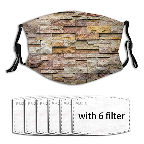 Windproof Activated carbon mask,Urban Brick Slate Stone Wall With Rocks Featured Facade Architecture Town Picture,Outdoor Facial decorations for adult (Filters 6pc)