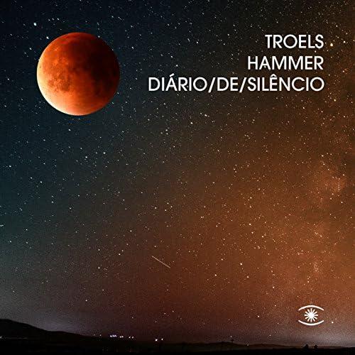 Troels Hammer