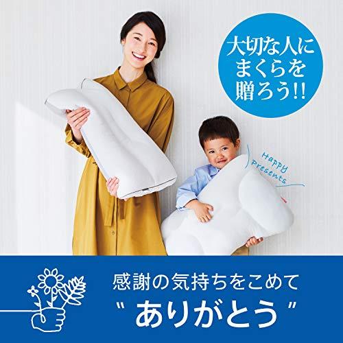 東京西川そばがら枕高さ(低め)衛生加工硬め放熱性天然素材そば殻ファインスムーズホワイトEH07114013L
