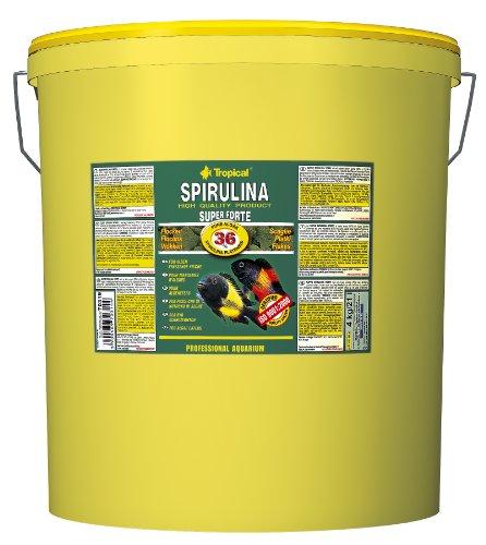 Tropical Super Spirulina Forte Flockenfutter mit 36% Spirulina (Platensis) Anteil, 1er Pack (1 x 21 l)