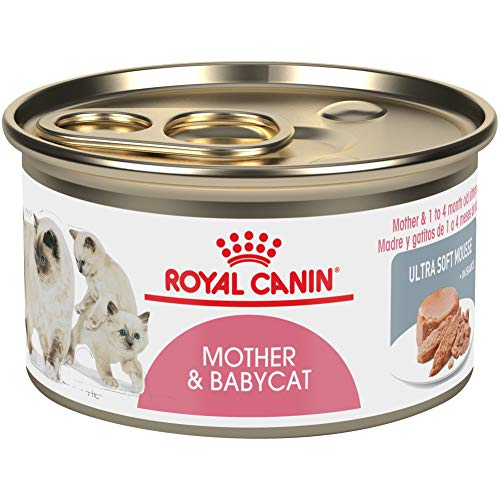 Royal Canin Feline Health Nutrition Mother & Babycat Ultra Soft Mousse in Sauce Canned Cat Food, 3 oz Can (Pack of 24)