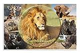 HERMA Almohadilla de escritorio Animales, Animales africanos, 55 x 35 cm, base antideslizante, impresa por ambas caras, limpiable, de cartón resistente