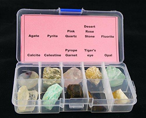 10piezas diferentes muestras Mineral Piedra con caja de plástico transparente colección Set