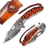 NEWOOTZ Damascus Steel Pocket Knife with Sheath for Men,Japanese Handmade 3.5in Blade,Liner Lock Snakewood Handle,Camping EDC Folding Knives