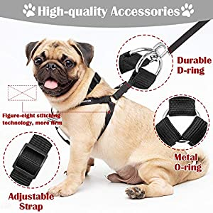 DMISOCHR Dog Harness and Leash Set with Collar - Black Adjustable No Pull Safe Doggy Harness - Soft Nylon H-Shape Full Body Harness - Easy Walking Control for Small, Medium, Large Dogs