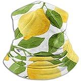 Archiba Polaina de Cuello Calentador de Limones de Acuarela de Color Amarillo Brillante Calentador de Polvo - Calentadores de oído gratuitos Diadema Calentador de Cuello de vellón