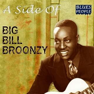 Best big bill broonzy get back Reviews