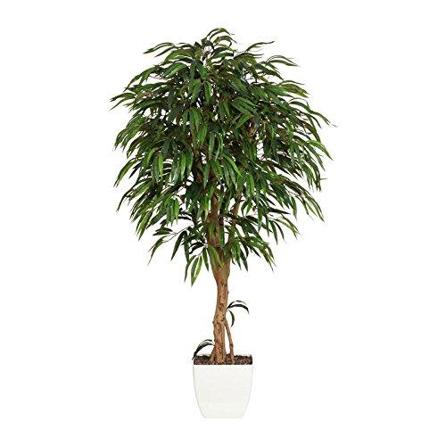 Kunstpflanze Weeping Ficus grün, mit Naturstamm und im Topf, ca. 180 cm