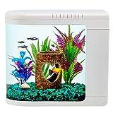 Top Fin Fish Eye View 2 Gallons Aquarium - Perfect for Betta Fish & Gold Fish